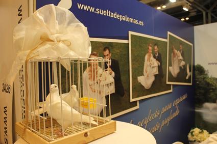 suelta de palomas boda